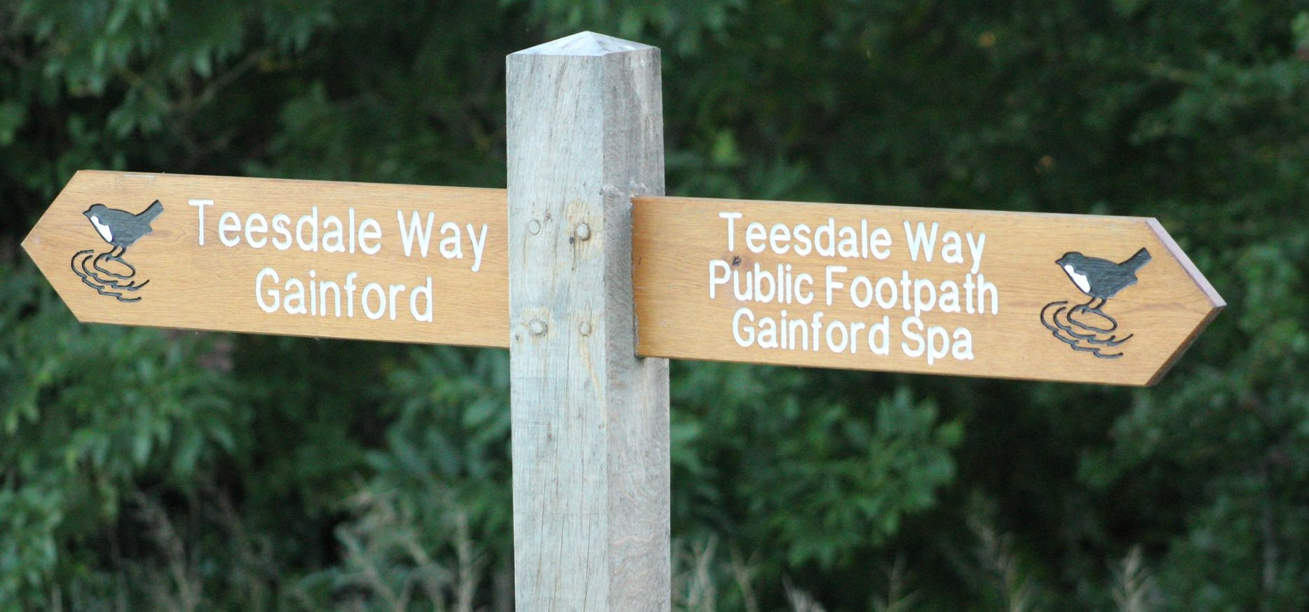 Teesdale Way at Gainford